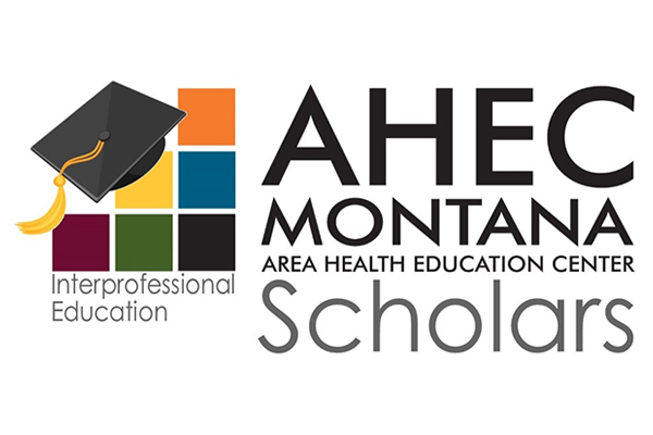 ahec scholars interprofessional education